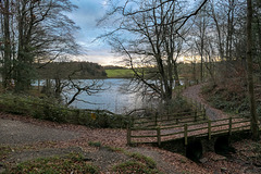 A 'HFF' to everyone from Dj... 'Linacre woods'