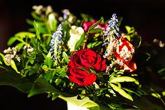 Rose 50 + 19B : Das Leben ist auf jeden Fall unglaublich schön