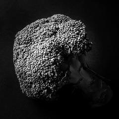 brocculi