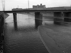 L.A. River (6444)
