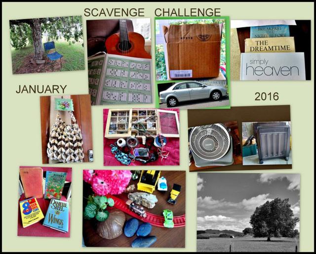 Scavenge Challenge Collage, Jan. 2016