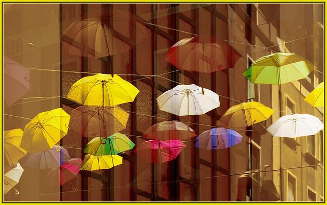 Genova : Anche gli ombrelli riflessi partecipano alla grande festa - (952)