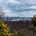 Liverpool waterfront from Bidston Hill2