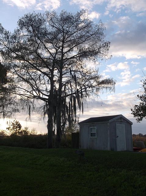 Petit matin sur le lac Cecile