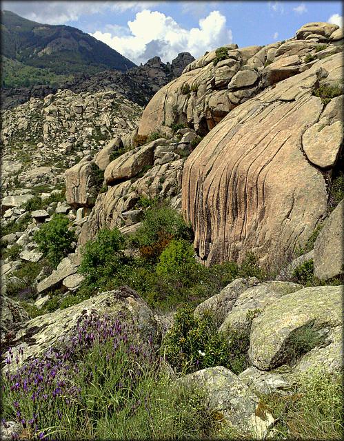 Sierra de La Cabrera, granite