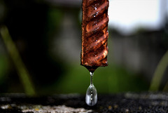 Water dripping off the bottom of a steel fence in the rain!