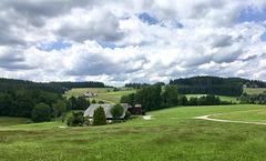 Urlaubsgrüße aus dem Schwarzwald