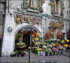 Annecy (74) 21 novembre 2009.