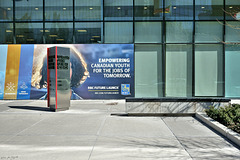 University Avenue, Toronto