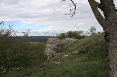 NaturKunstRaum Neubürg