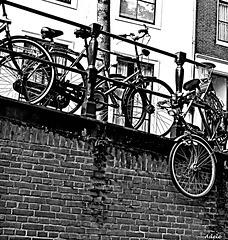 Amsterdam   bike fence