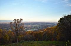 A Shenandoah View
