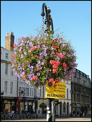 floral warning