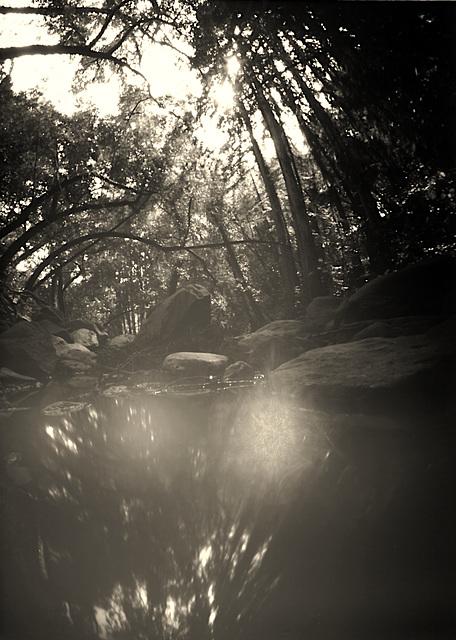 Matanzas Creek