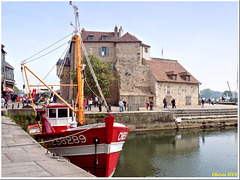 Honfleur : the old pier and the Lieutenancy
