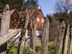 Fence - Zaun Menzlesmühle