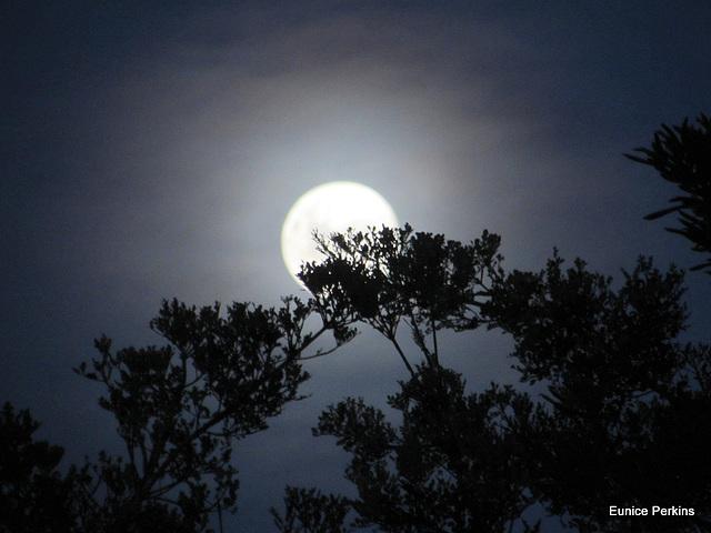 Moon Half Hidden.