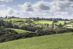 Waterwynch fields from coastal path