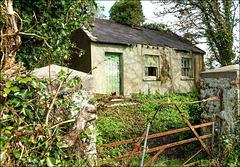 Rural decay 9