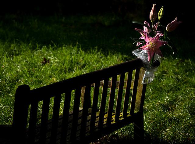 """""""In Memory Of Anne-Marie"""""""