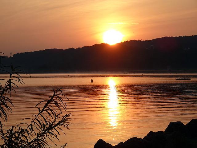 Sonnenaufgang am Neuenburgersee bei Yverdon les Bains