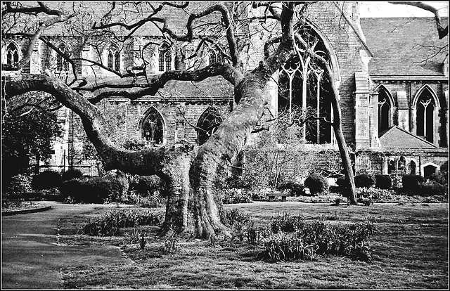 St Giles, Camberwell.