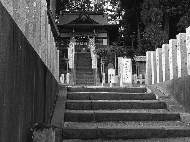 Steps to the shrine