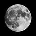 Moon 2016-11.13