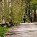 Ein Ausritt ins Grüne - A ride into the woods - Tag des Baumes