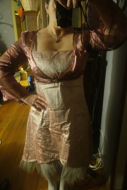 My Semi Formal Party Dress