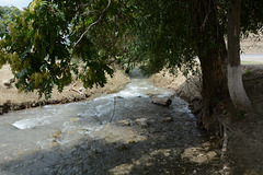 Turkmenistan, The Stream of Cold Water in the Valley of Chuli