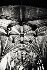 Inside a Gothic Horror place