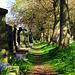 Spring, Preston Cemetery, North Shields, NE England