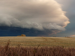Yesterday's storm