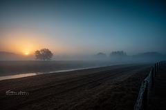 Sonnenaufgang im Wacholderhain Haselünne