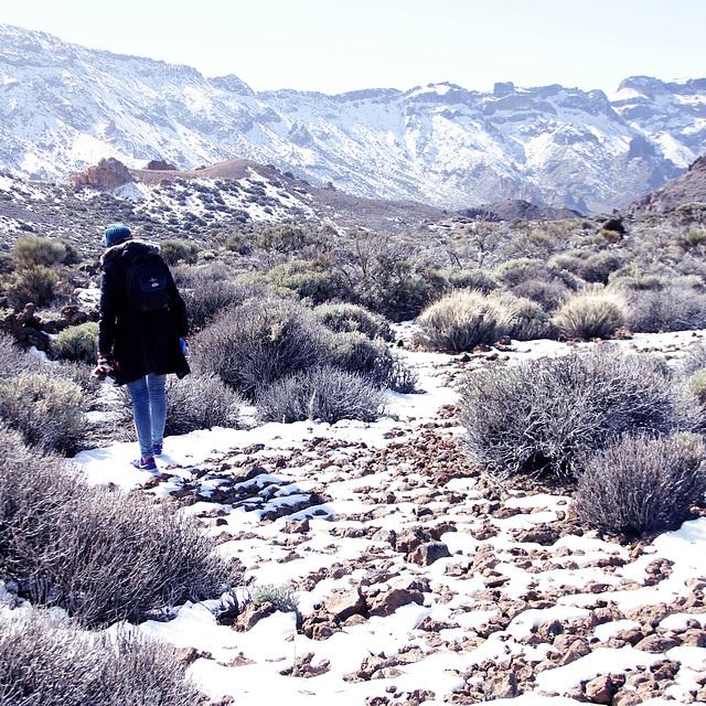 De paseo en el Teide.