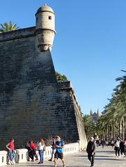 Palma - Catedral de Mallorca