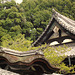Kodai-ji Temple grounds