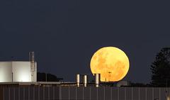 Super moon over Fremantle.