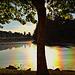 Over the Rainbow [ON EXPLORE]