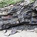 Nolton Haven sandstone channel scours