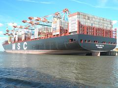 MSC MAYA in Bremerhaven