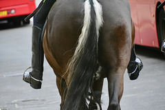 London 2018 – Mounted police (rear view)