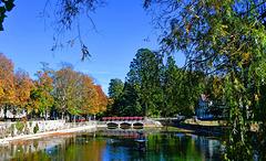 Reflets d'automne dans la Venoge