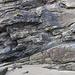 Nolton Haven channel sandstones