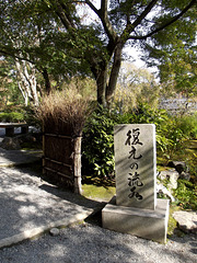 Tenryu-ji Temple grounds