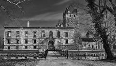 ........die Schlossruine Pottendorf  in NÖ........