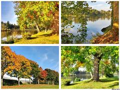 Visions d'automne...