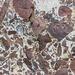 Nolton Haven channel lag deposit in beach boulder 1