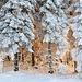 Vosges et beauté